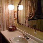 Bath with shower/tub
